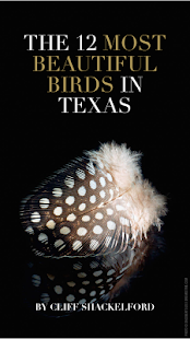 TX Parks & Wildlife magazine- screenshot thumbnail