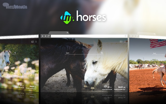 Horses HD Wallpapers New Tab