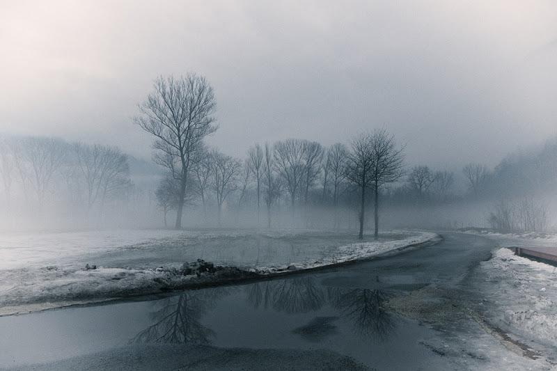 Aspettando il disgelo di Tiziana Detoni