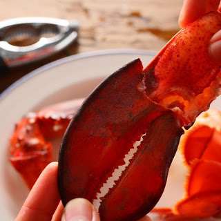 Basic Steamed Lobster.
