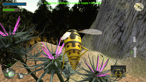 cofe tricheWasp Nest Simulator - Insect and 3d animal game  1