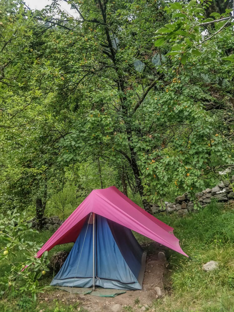 camping places to stay+manali town shimla+manali+himachal+pradesh