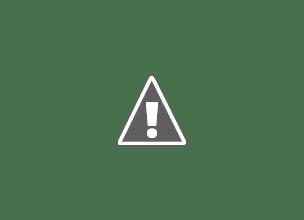 Photo: cockpit Seaking