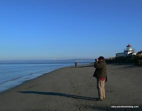 Photo: Birding at Point No Point, Puget Sound