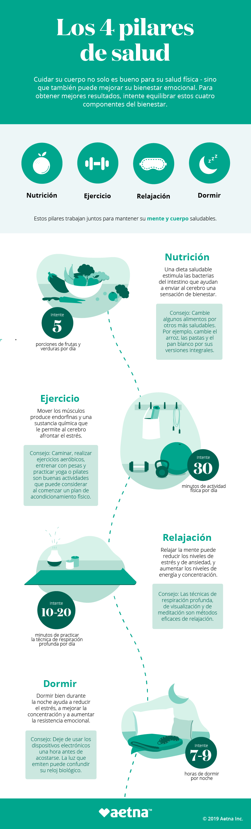 Infografía sobre los cuatropilares de la salud