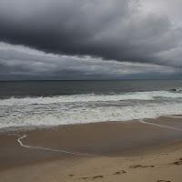 Cape Cod di