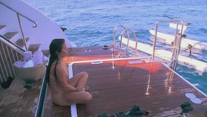 Shot Through the Heart, and Ibiza's to Blame thumbnail