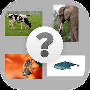 Cual es el nombre del animal?