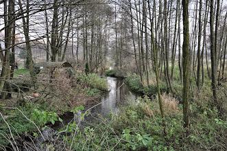 Photo: 86,7 km poniżej mostu i młyna w Kochanowie
