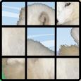 Animal Jigsaw Puzzle -Free-