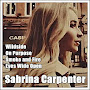 Sabrina Carpenter Wildside APK icon