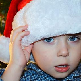 by Shannon Maltbie-Davis - Public Holidays Christmas ( red, santa, tree, blue, santa claus )