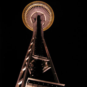 The Space Needle by Michelle Bergeson - Buildings & Architecture Public & Historical ( space needle, architechture, seattle, dark, night,  )