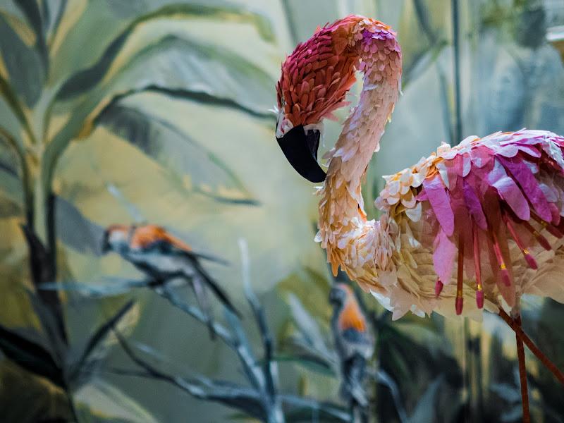 Il flamingo di carta di anija