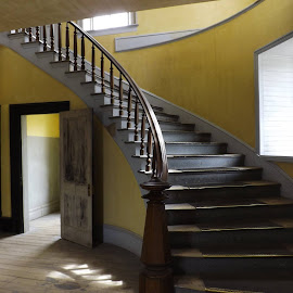 curved staircase  by Vibecka Olson - Buildings & Architecture Other Interior (  )