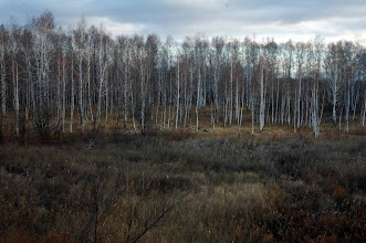 Photo: Siberia