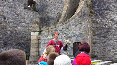 Photo: Roofvogelshow