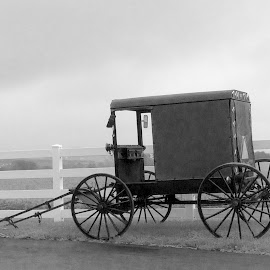 Amish life by Joe Fazio - Instagram & Mobile iPhone (  )