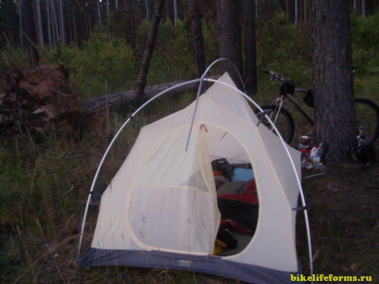 С палаткой в Завидовский заповедник