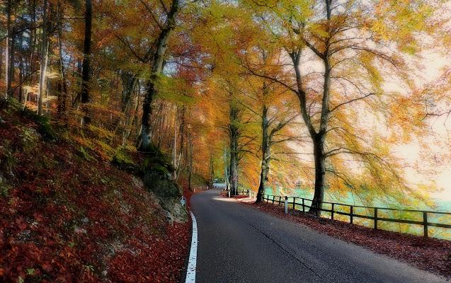 Strade d'autunno di donyb