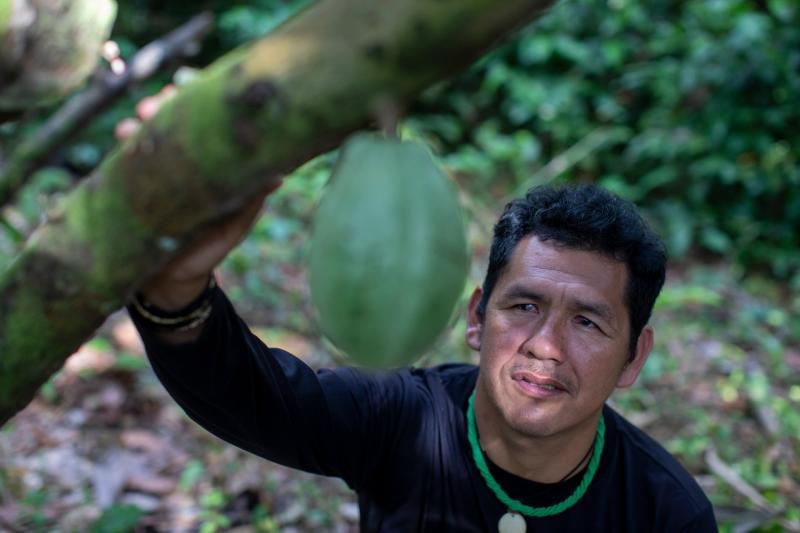 Хулио Еквана, президент Ассоциации Ваансдуум, придумавшей какао-проект.