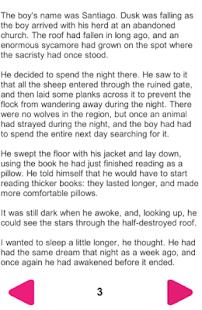 The Alchemist English Novel - náhled