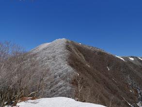 多志田山付近から藤原岳を望む