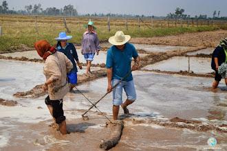 Photo: Land preparation, ToT 1, Tha Tum, Surin