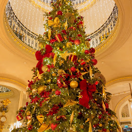 Ritz Christmas Tree by Andrew Moore - Public Holidays Christmas (  )