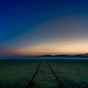Night road by Sergei Pitkevich - Landscapes Prairies, Meadows & Fields