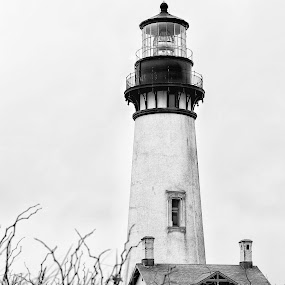 Yaquina Head Lighthouse by Shaun Schlager - Travel Locations Landmarks ( yaquina, oregon, lighthouse, oregon coast, yaquina head lighthouse, newport, coast )