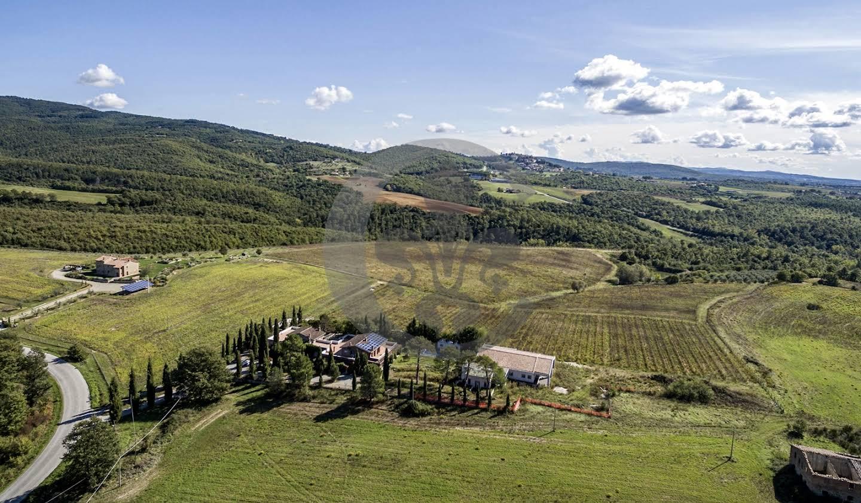 Vignoble avec piscine et dépendances Monteleone d'Orvieto