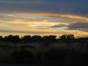 Photo: Year 2 Day 218 - Sunsetting Over the Scrub Around Uluru #2
