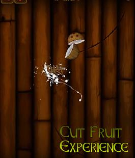 Cut Fruit Expérience 2 - náhled