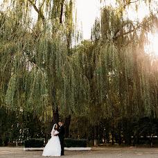 Wedding photographer Alena Franc (Franz). Photo of 03.12.2017