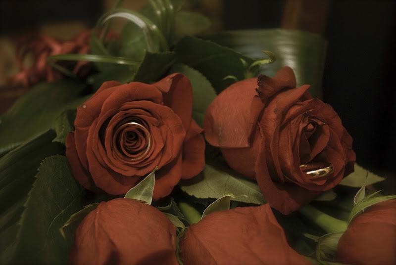 Rose e Oro di Simo Foto