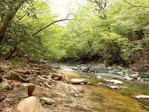 神崎川の流れ