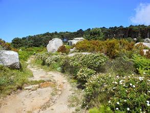 Photo: Gran bel giardino naturale, per le fioriture non potevamo trovare periodo migliore.