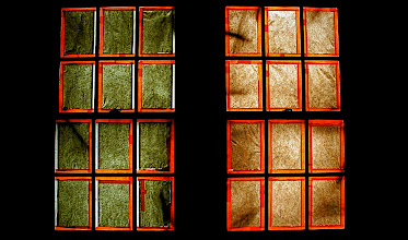 Photo: Two windows evidently covered in different types of paper.