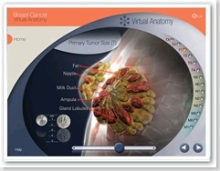 virtualanatomy