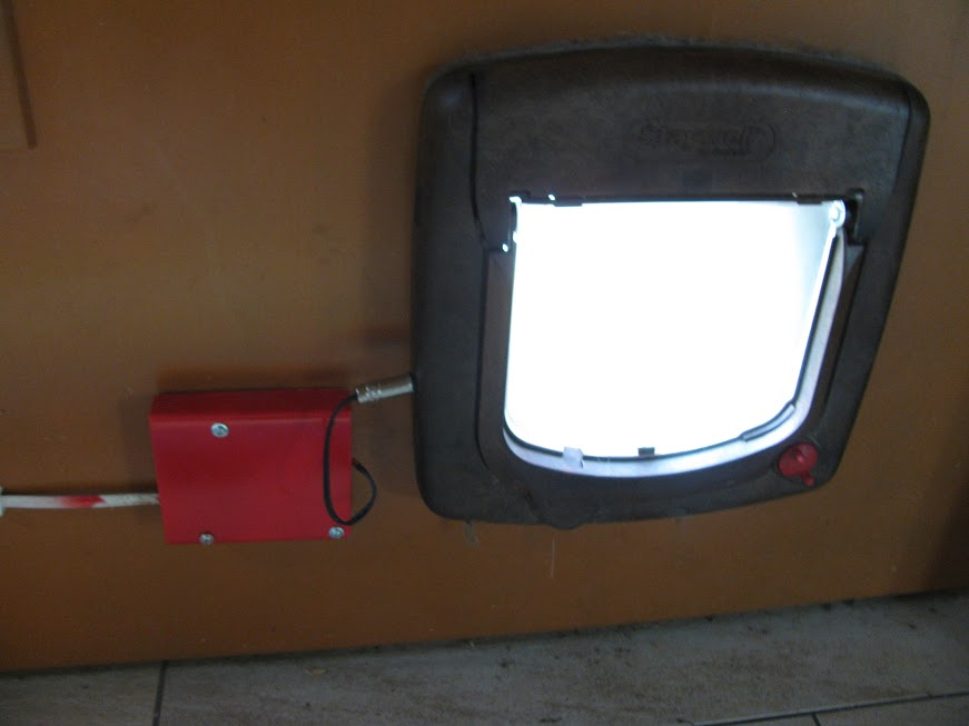 The 50 by 50 millimeter red box to the left of the catflap