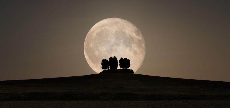 E la Luna busso alle porte del buio di Simonetti Andrea