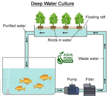 Aquaponics gardening system android apps on google play for Fish garden system