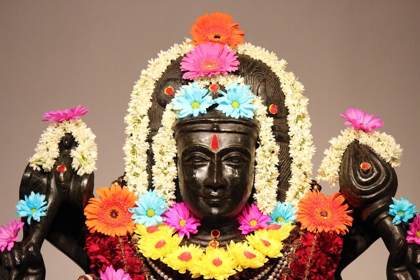 MahaSivaratri celebrations at AVG [video]