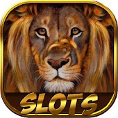 Lion safari slots
