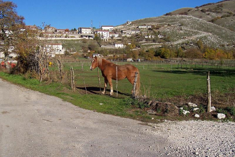 Abruzzo terra di pascolo e agricoltura  di GVatterioni
