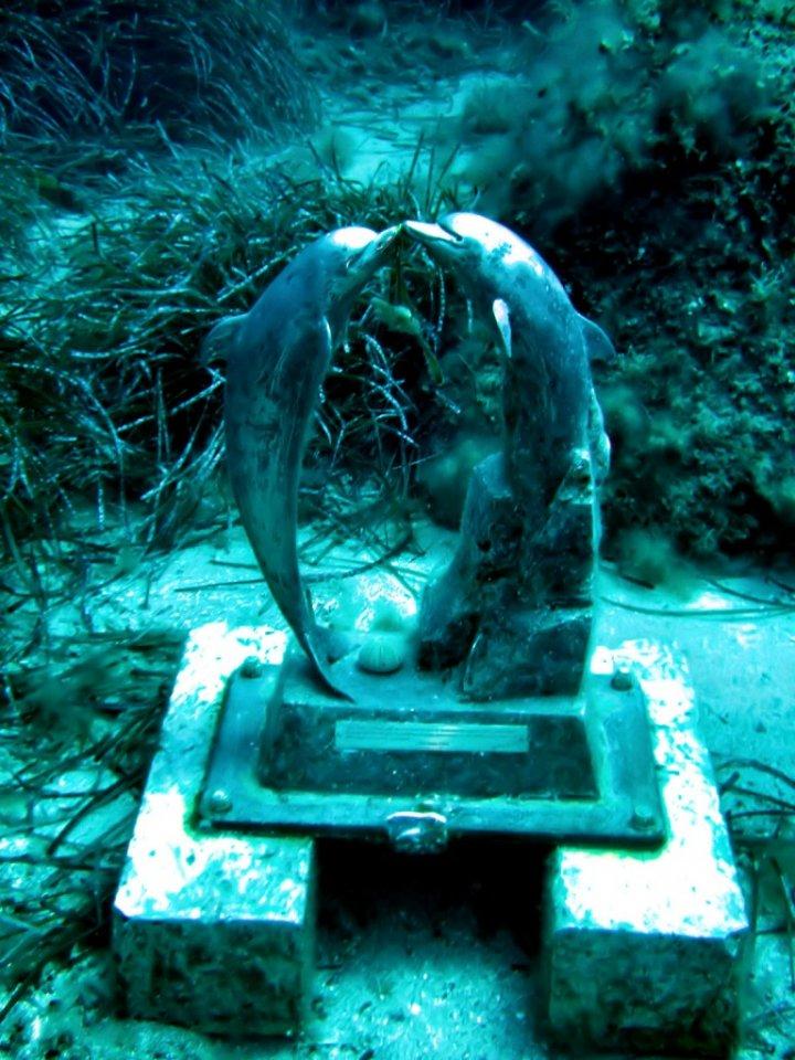 delfini nel blu di gufore