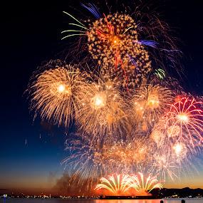 Van Fireworks by Nguyen Kien - Abstract Fire & Fireworks ( fireworks, vancouver )