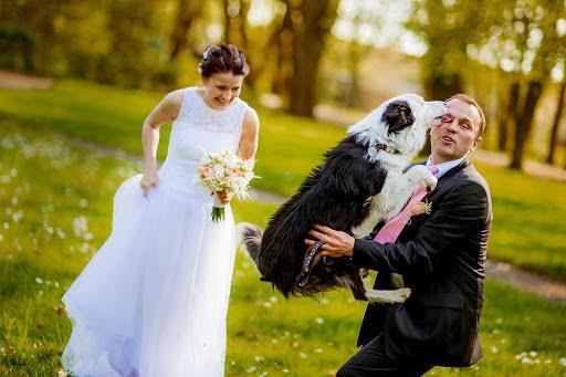 Wedding photographer Petr Wagenknecht (wagenknecht). Photo of 26.10.2015