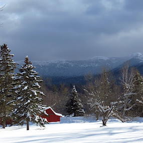 Snowy Barn by Bryant Mountjoy - Landscapes Mountains & Hills ( red, mountains, barn, snow, vermont, mansfield,  )